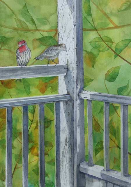 house_finches _ watercolor 22inx15in - $800