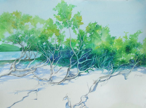 mangroves - watercolor 22in x 30in - $3000